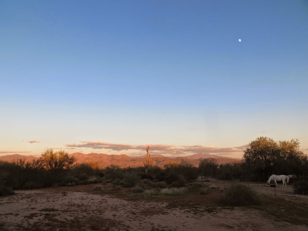 Rio Verde, Arizona